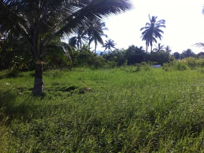 Land for sale in Litibu - Punta de Mita, Riviera Nayarit, Mexico